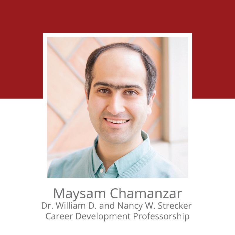 Maysam Chamanzar